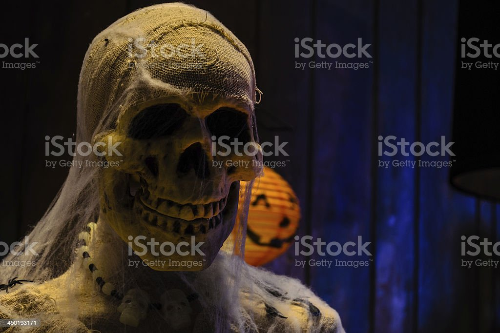 Skull of Halloween stock photo