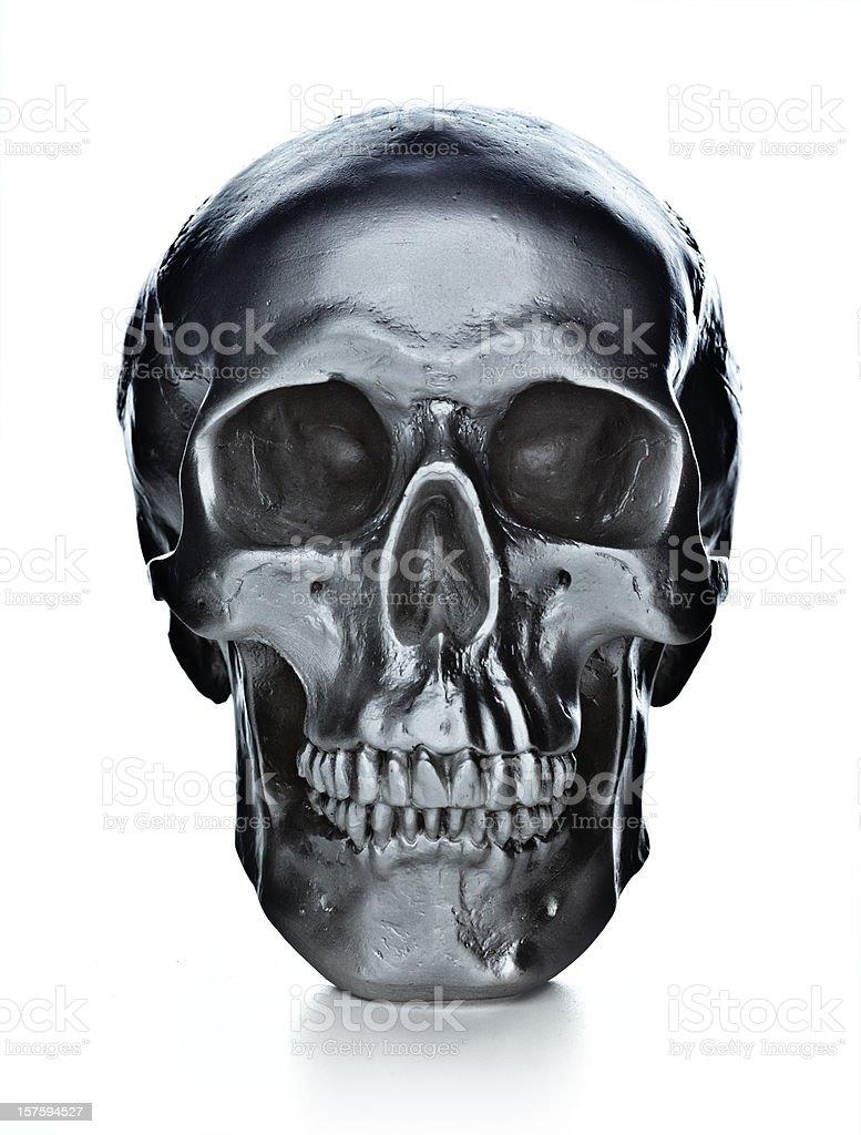 skull on white background royalty-free stock photo