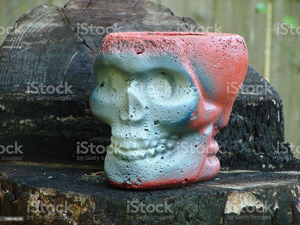 skull planter royalty-free stock photo