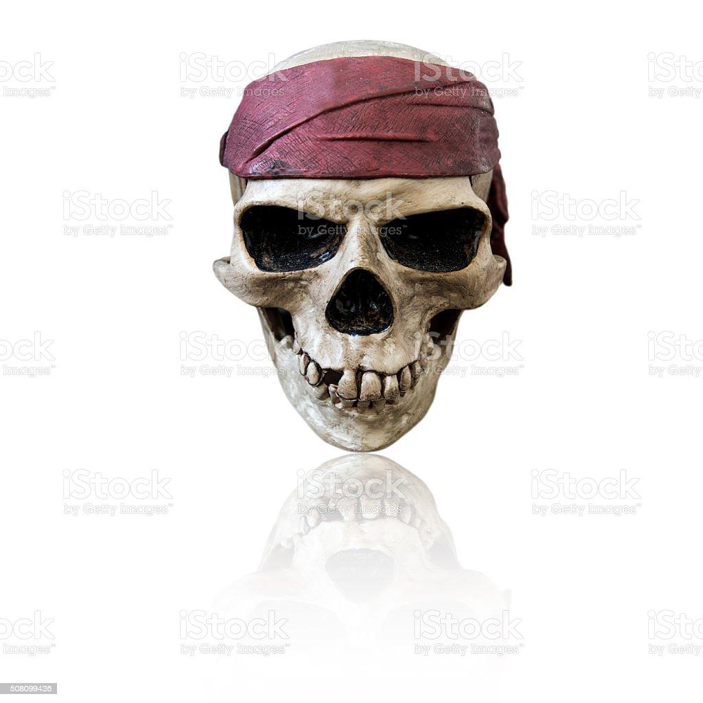 Skull wearing maroon bandanna, isolated on white background stock photo