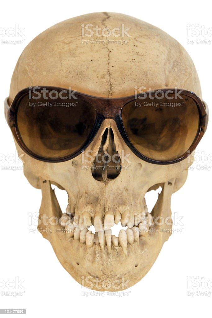 Skull Wearing Sunglasses stock photo