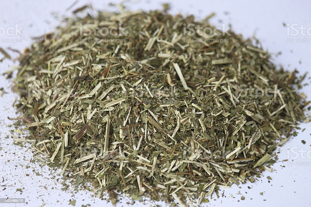 Skullcap Herb Cut stock photo