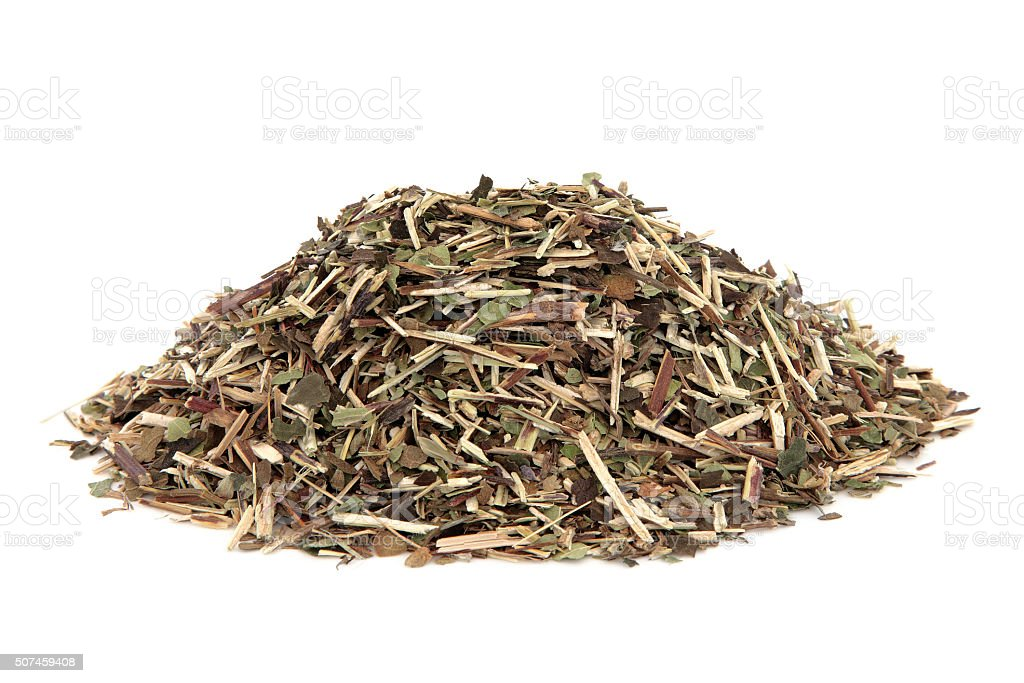 Skullcap Herb stock photo