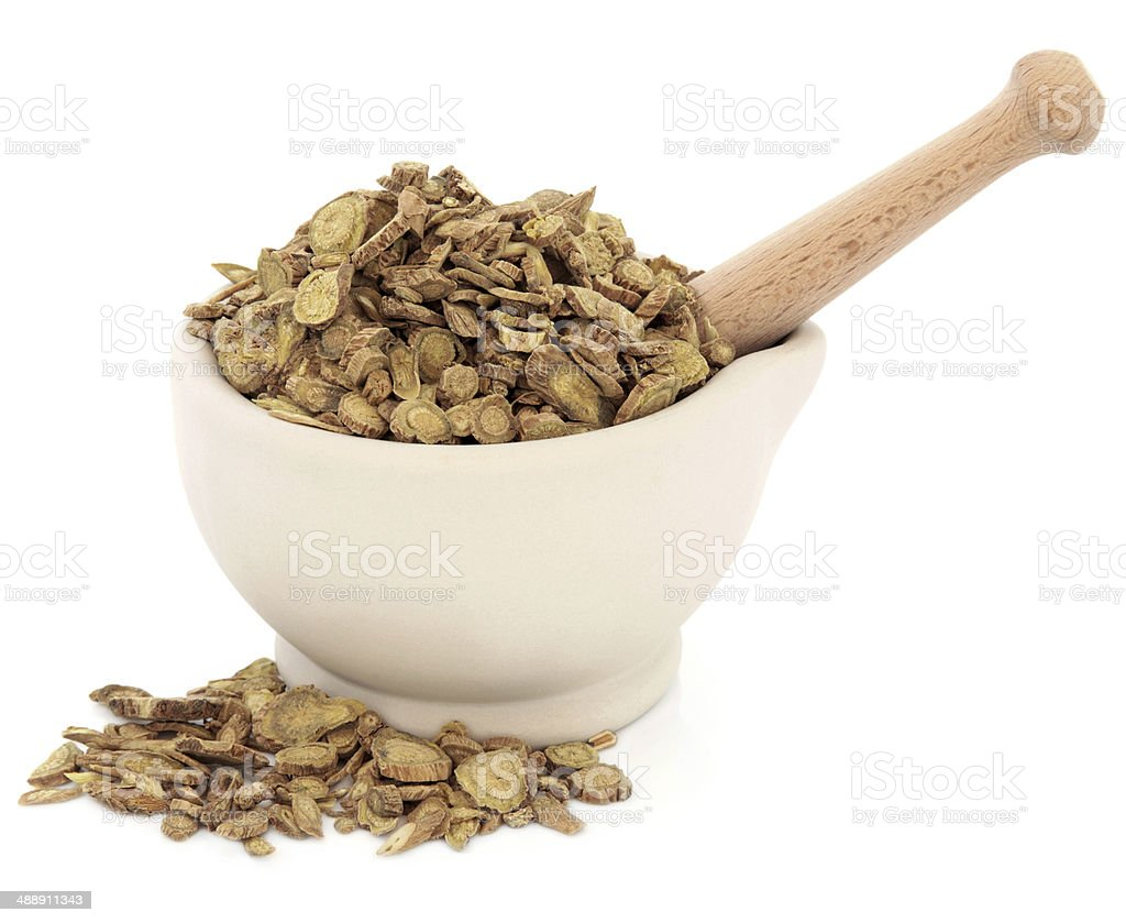 Skullcap Root stock photo