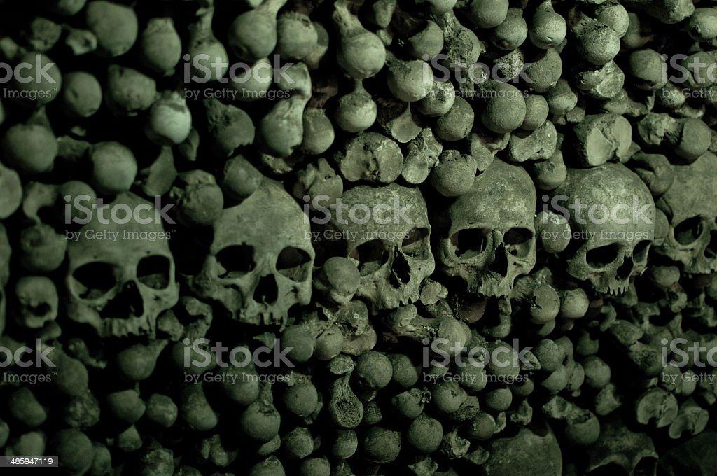 Cráneo, huesos foto de stock libre de derechos
