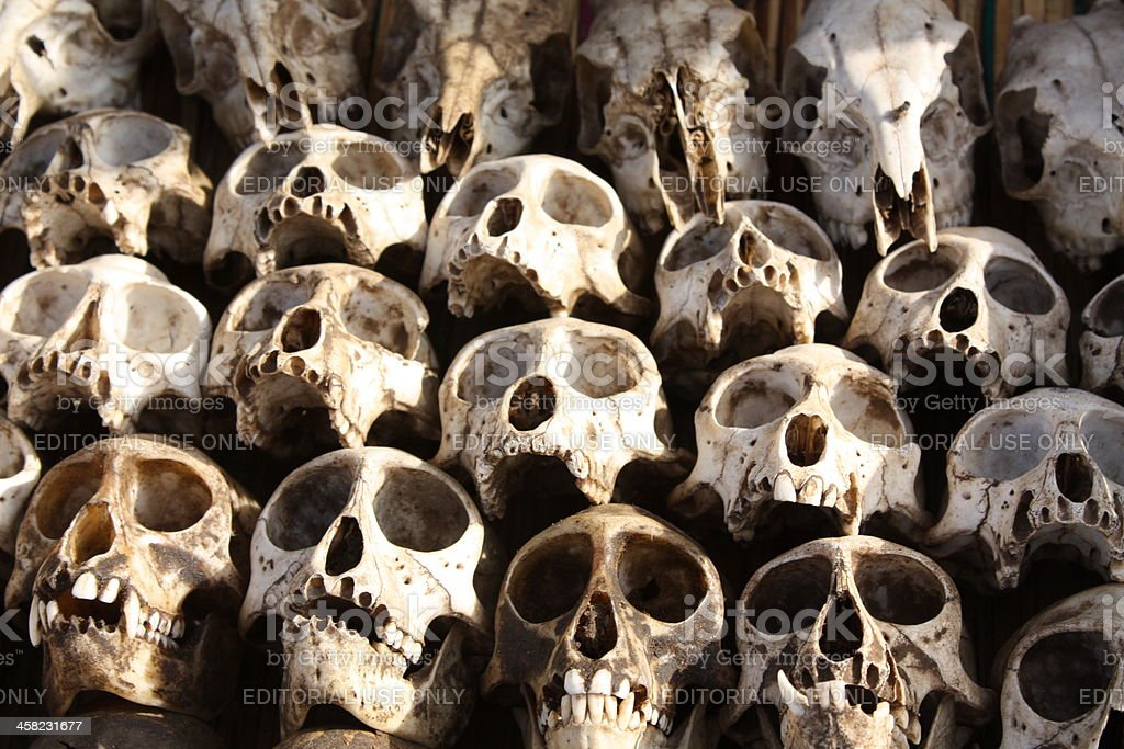 Skulls at Akodessewa Fetish or Voodoo market of Lomé, Togo stock photo