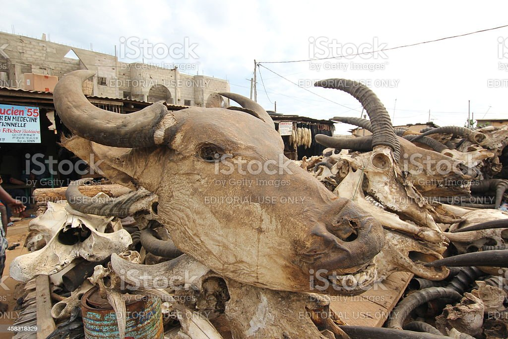 Skulls at the Voodoo market in Lomé, Togo stock photo