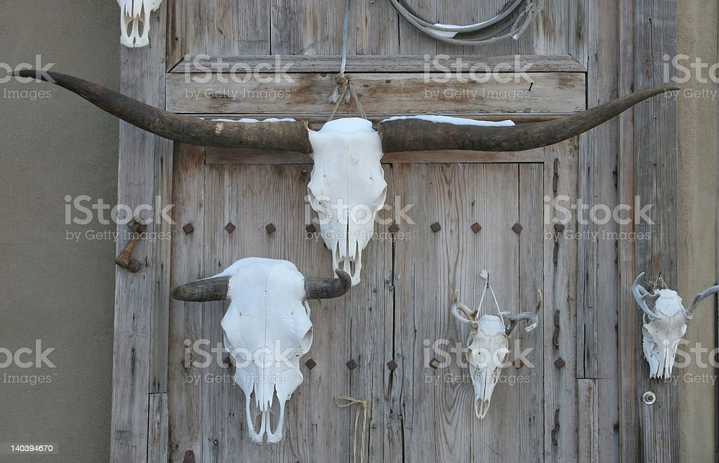Skulls on a wall royalty-free stock photo
