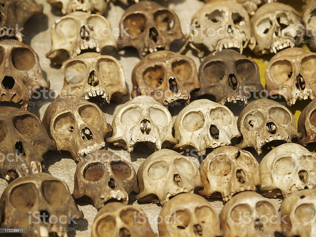 Skulls royalty-free stock photo