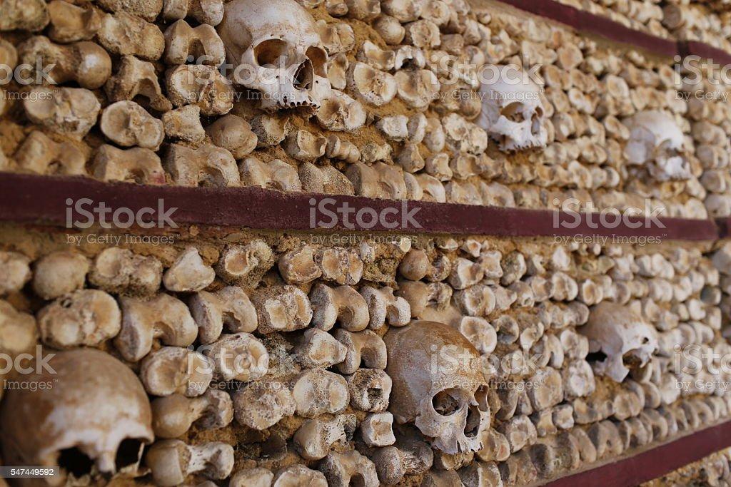 Skulls stock photo