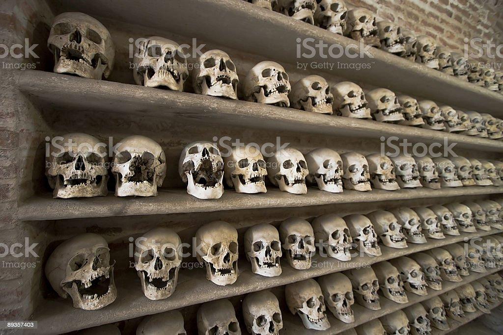 Skulls two royalty-free stock photo