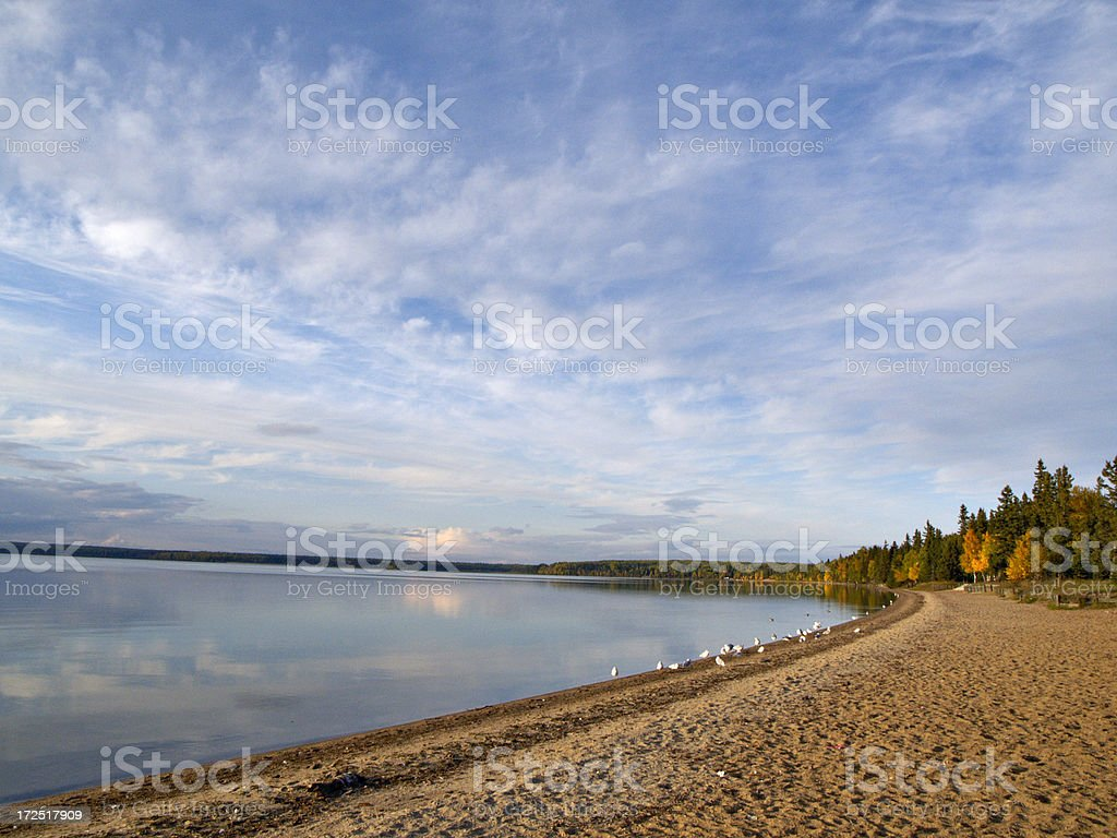 Sky and Beach in the Wilderness stock photo