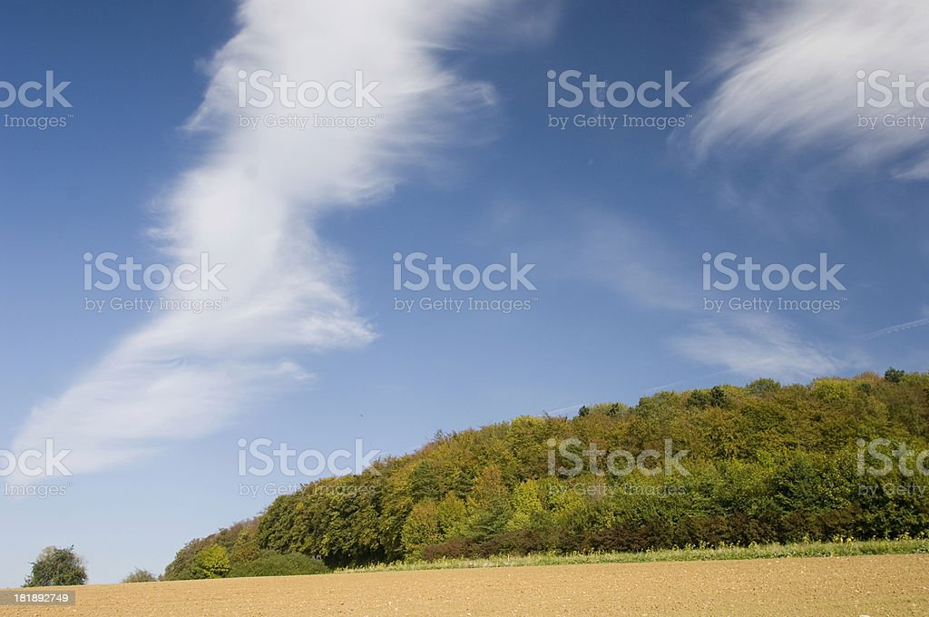 Sky and forest royalty-free stock photo