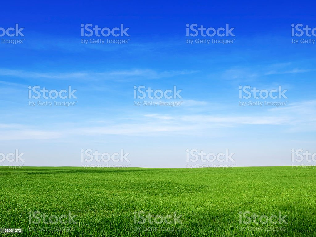 sky and grass backround royalty-free stock photo