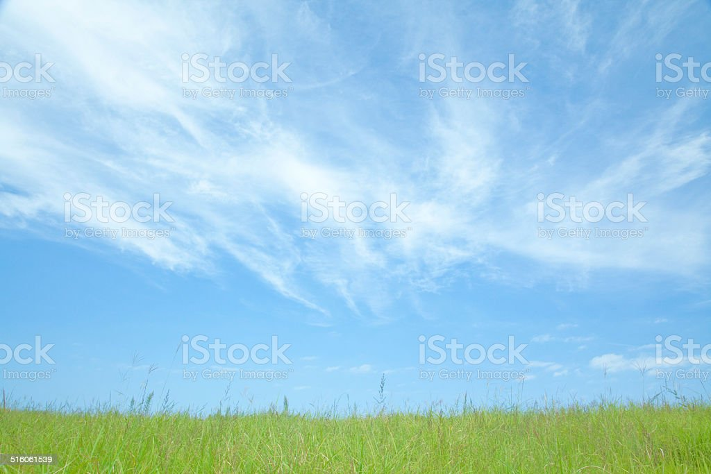 Sky and grassland stock photo