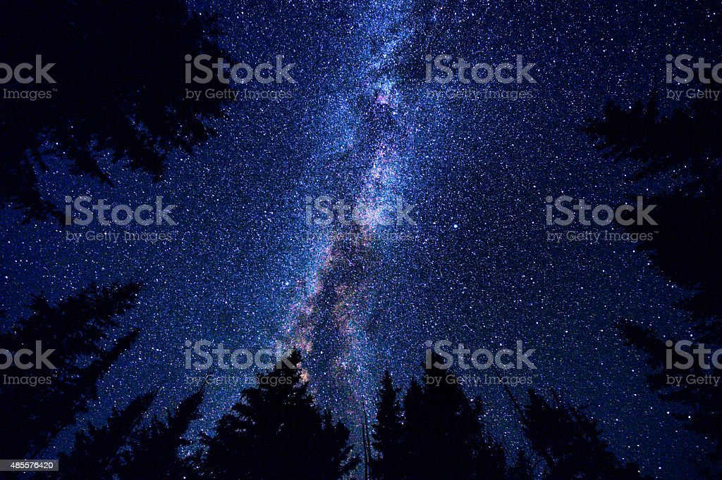 Sky and Mountain Forest at Night with Milky Way Galaxy stock photo