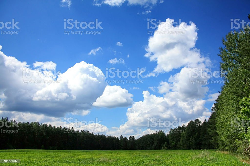 sky, clouds and spring field stock photo