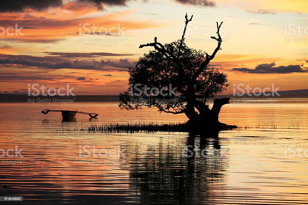 sky on fire siqijour mangrove sunset philippines royalty-free stock photo