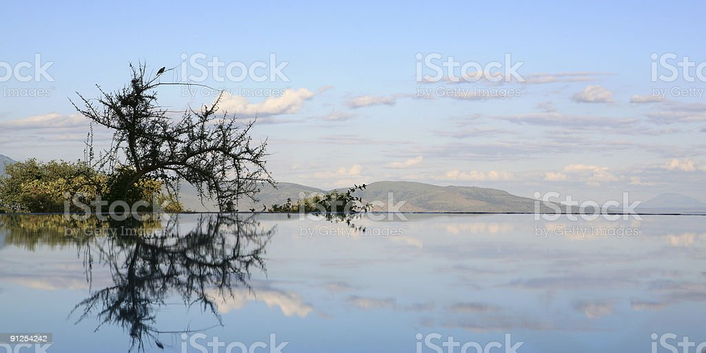 sky reflecting in swimming pool Lake Manyara Tanzania royalty-free stock photo