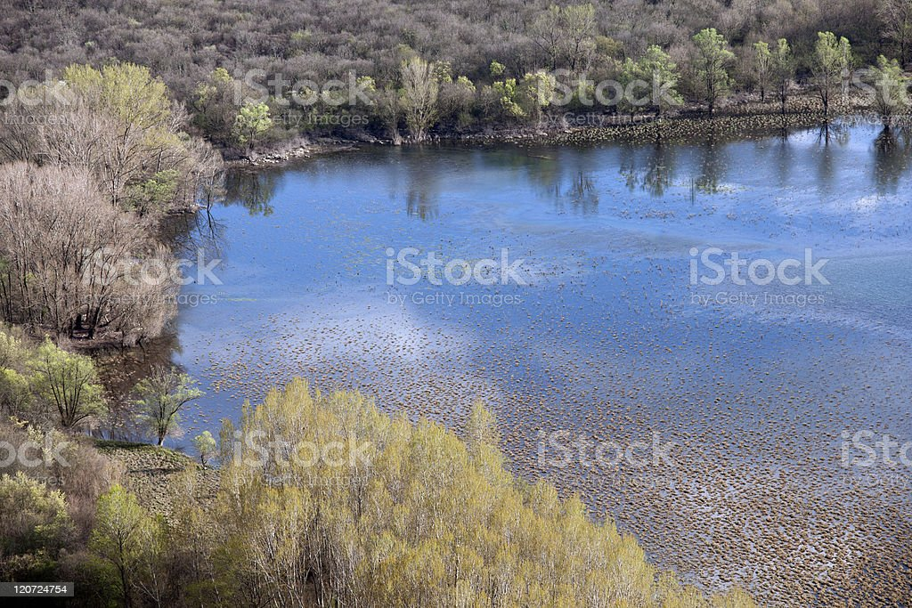 Sky Reflecting in Water royalty-free stock photo