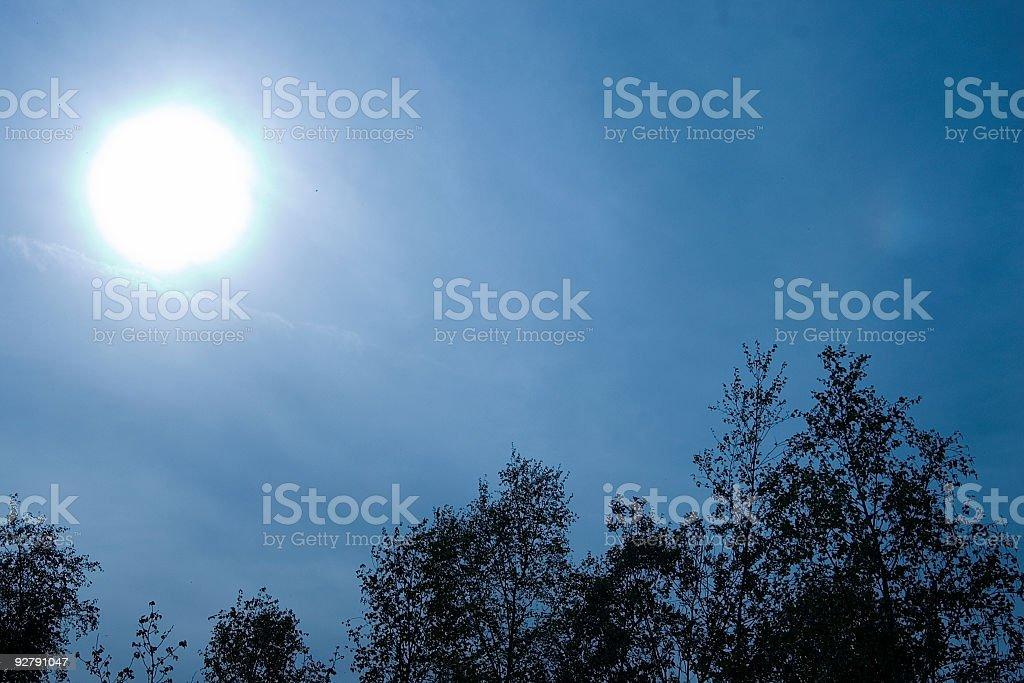 sky sun trees stock photo