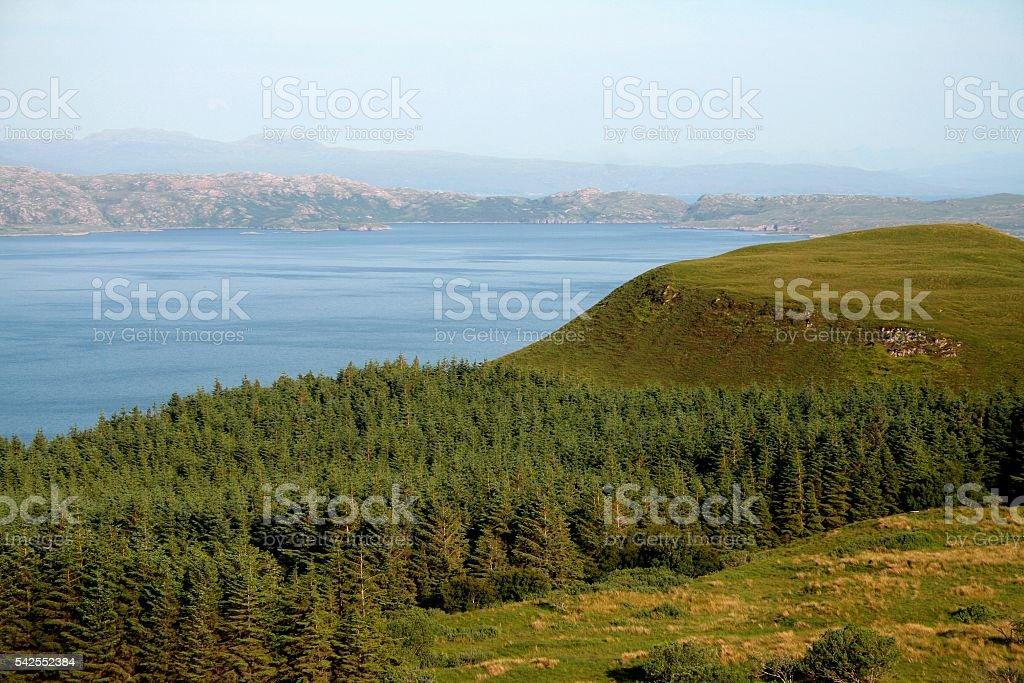 Skye island landscape nature loch grove Scotland UK stock photo