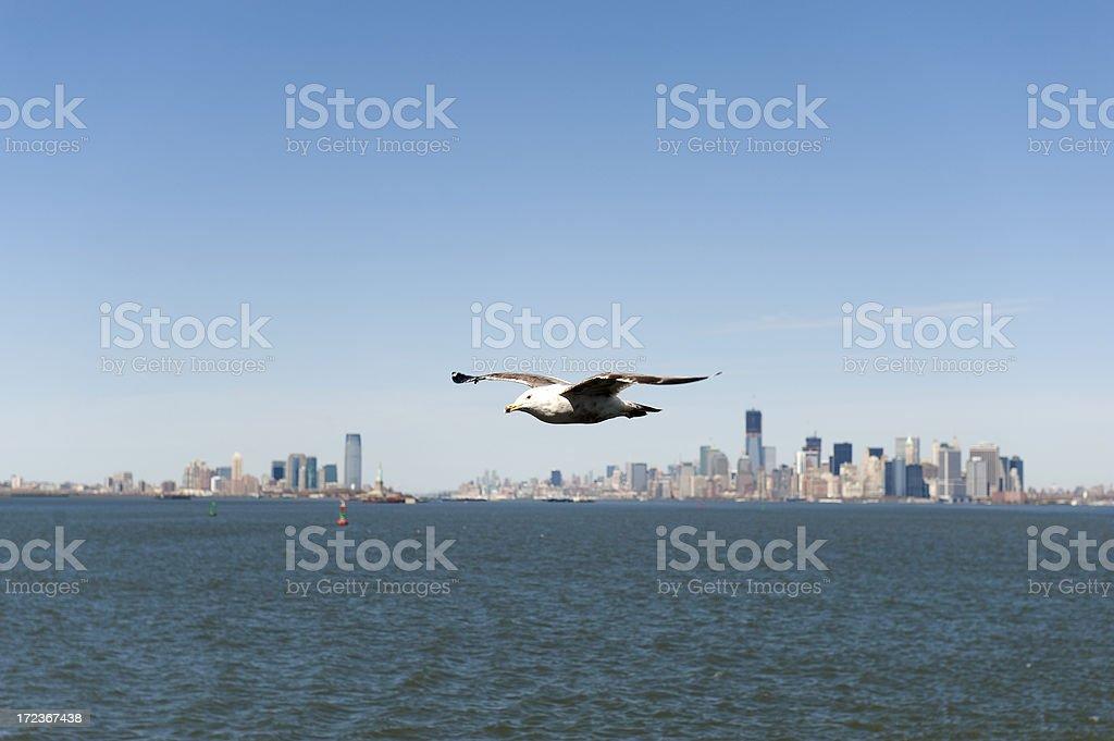 Skyline of Manhattan royalty-free stock photo