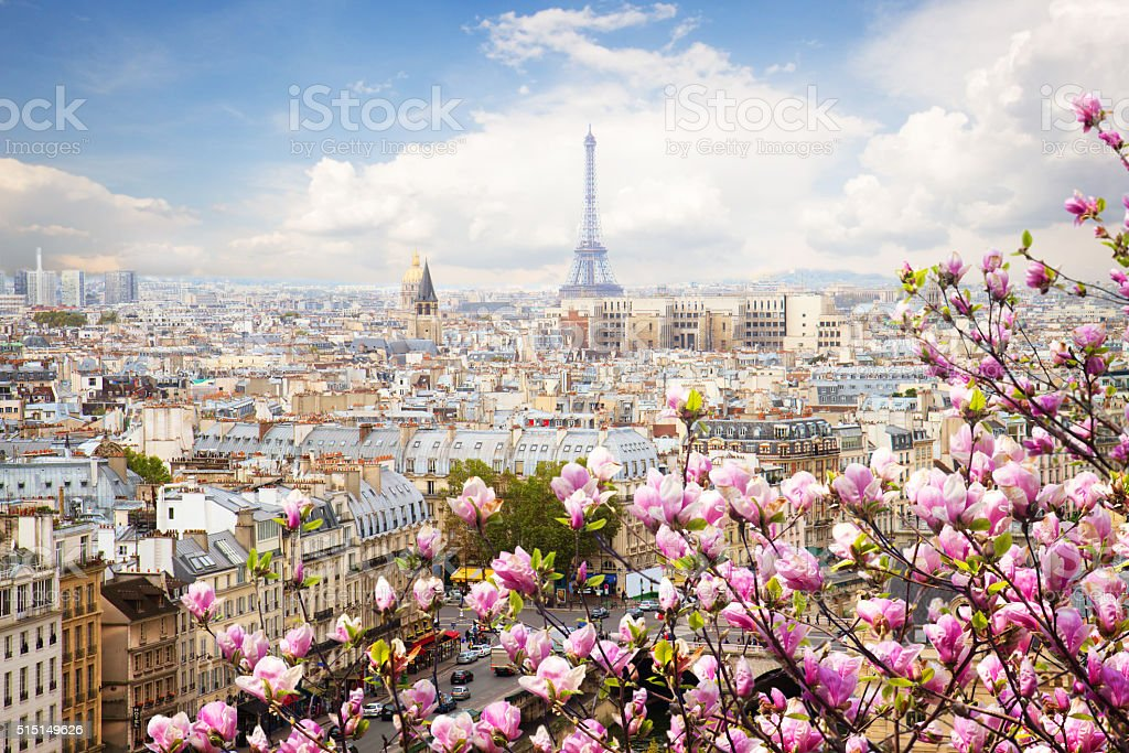 skyline of Paris with eiffel tower stock photo