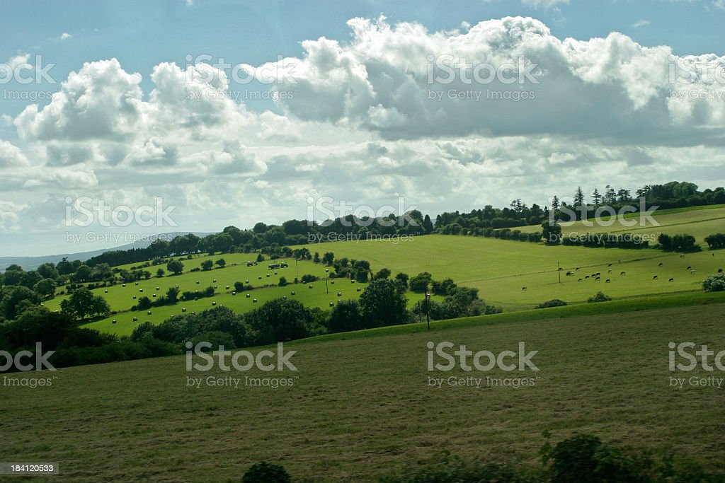 Skyline picture of an open farmland royalty-free stock photo