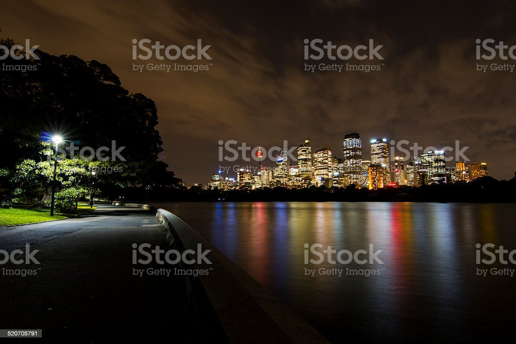 Skyline Sydney by night (Royal Botanic Gardens) stock photo