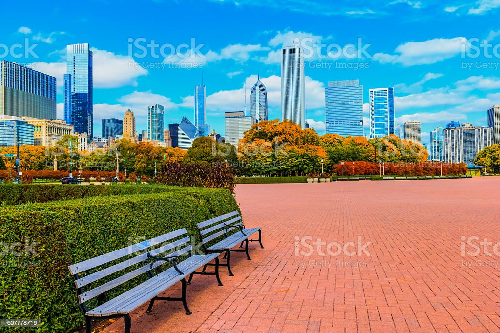 Skyscraper of Chicago Skyline and Grant Park,ILL (P) stock photo
