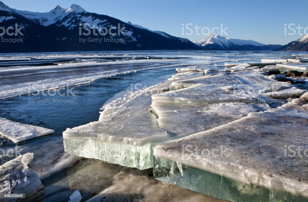 Slabs of ice in the Chilkat Estuary stock photo