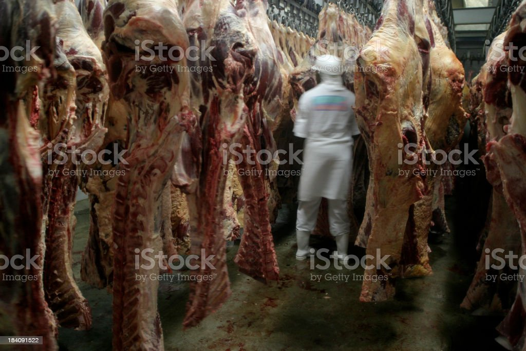 Slaughterhouse royalty-free stock photo