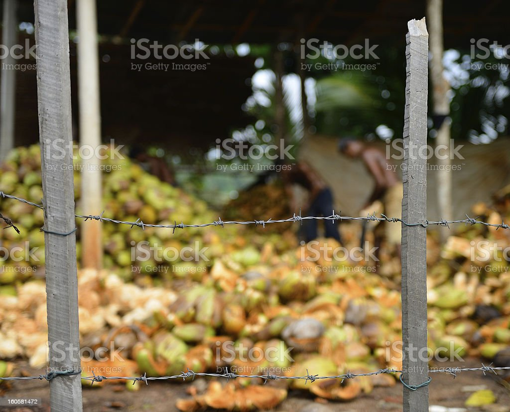 slave labor royalty-free stock photo