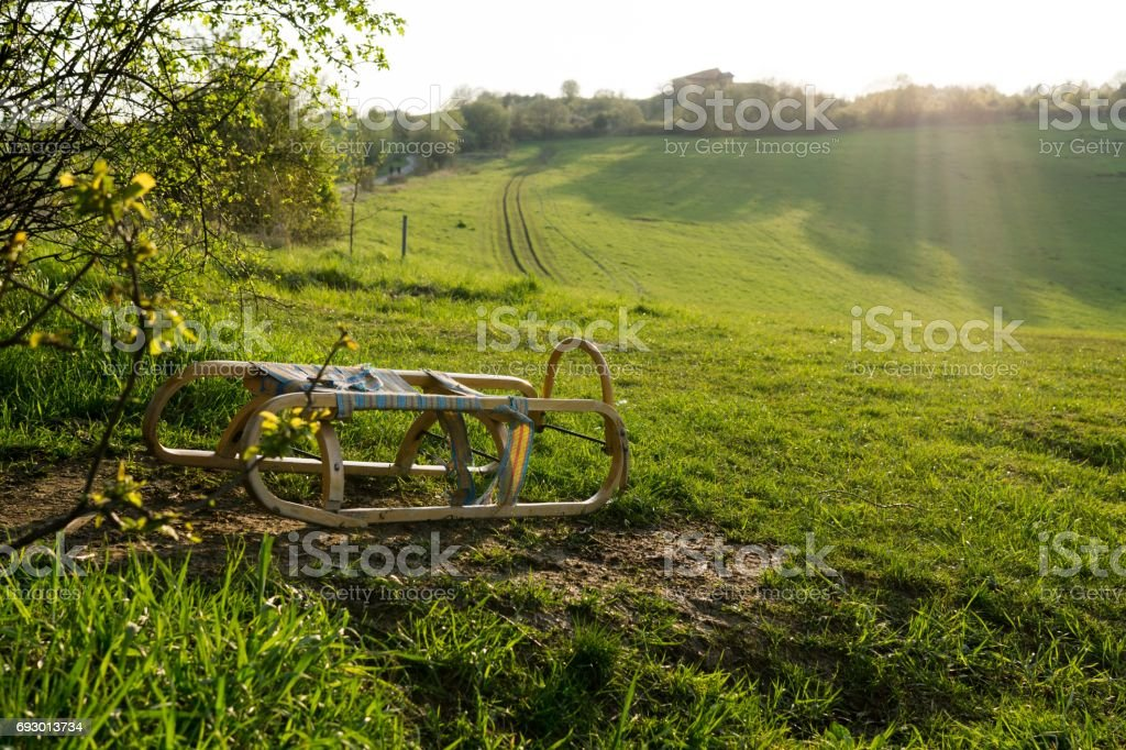 Sledge under the tree on a green meadow. stock photo