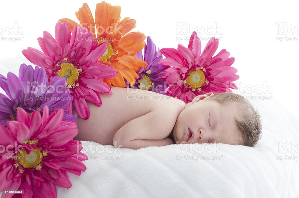 Sleeping baby girl surrounded by flowers. stock photo