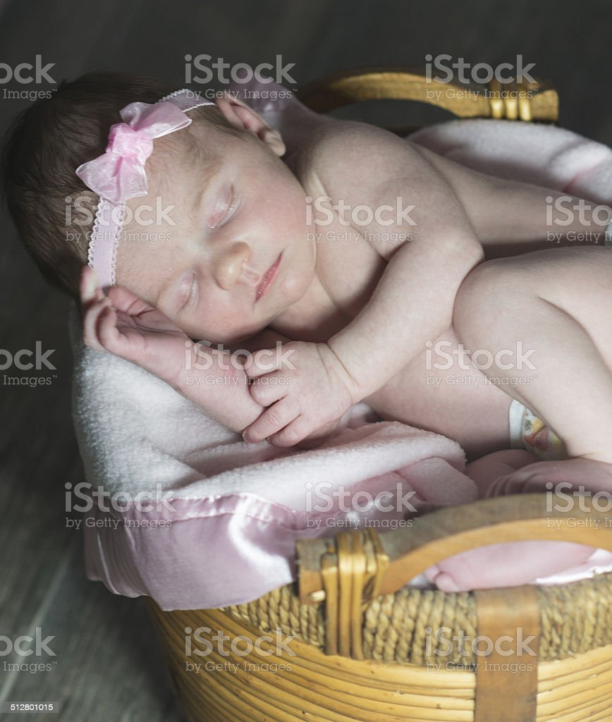 Sleeping In a Basket stock photo