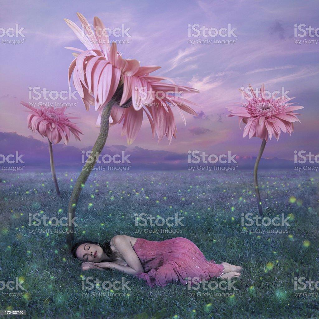 Sleeping in nature stock photo