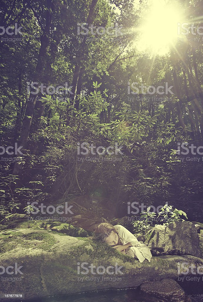 Sleeping in the Forest royalty-free stock photo