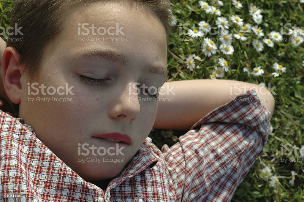 Sleeping in the garden royalty-free stock photo