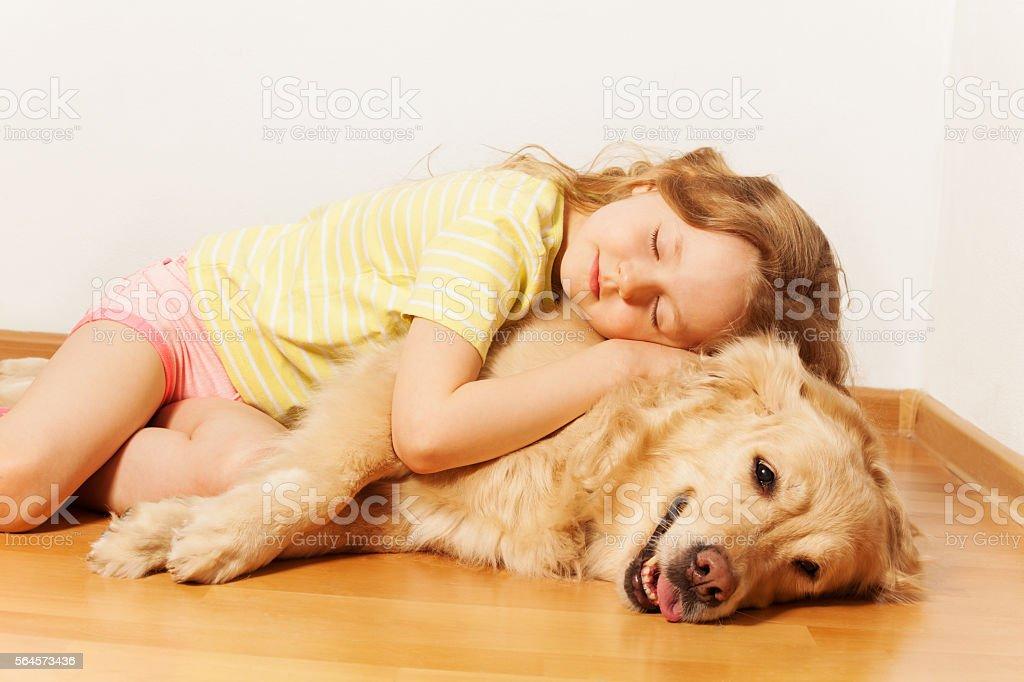 Sleeping little girl lying on her Golden Retriever stock photo