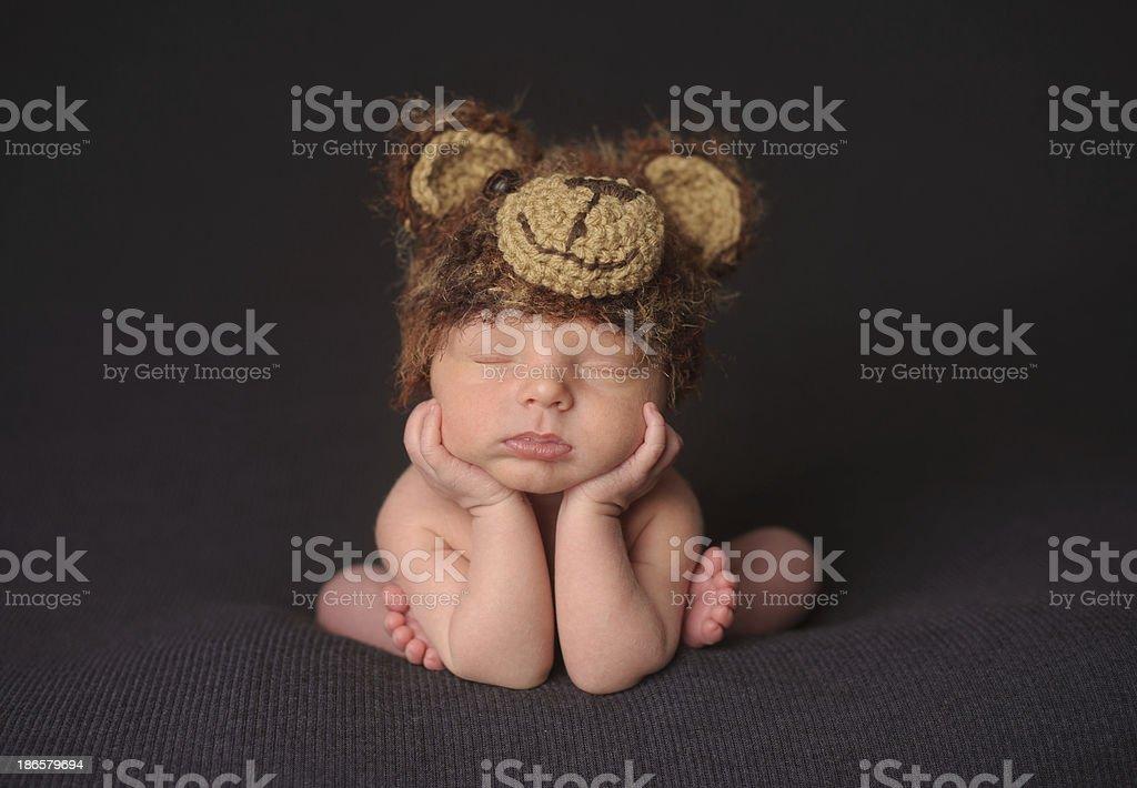 Sleeping Newborn Boy in Bear Hat royalty-free stock photo