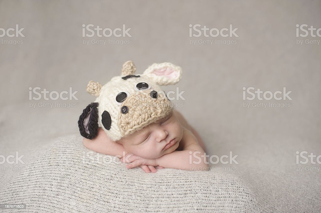 Sleeping Newborn Boy in Knit Cow Hat royalty-free stock photo