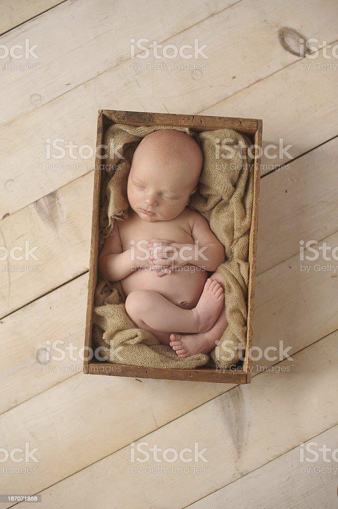 Sleeping Newborn Boy royalty-free stock photo