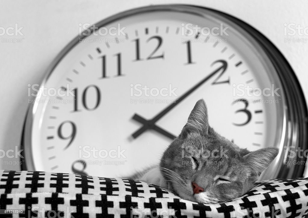 Sleeping time stock photo
