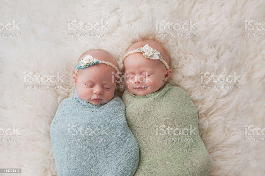 Sleeping Twin Baby Girls stock photo