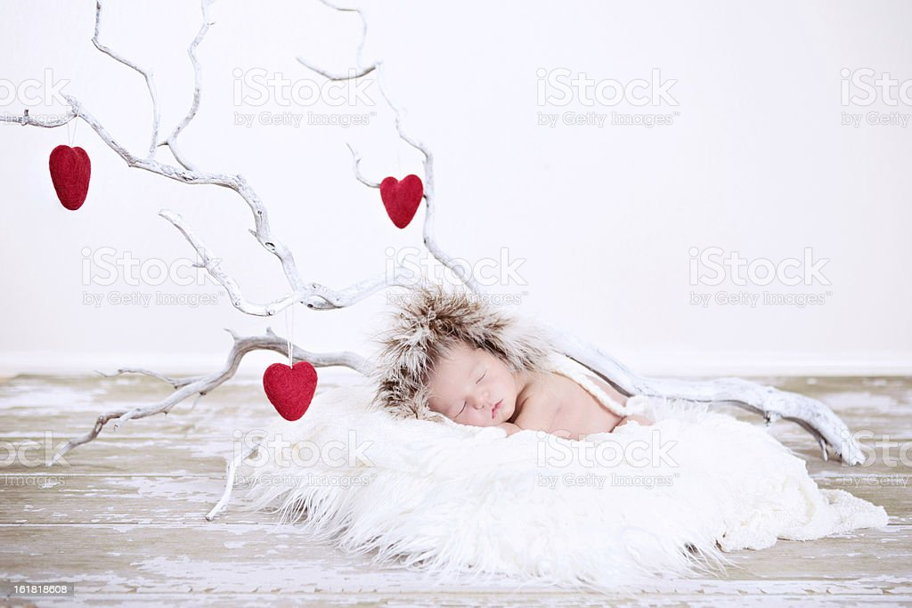 Sleeping Winter Baby with Heart Branches royalty-free stock photo