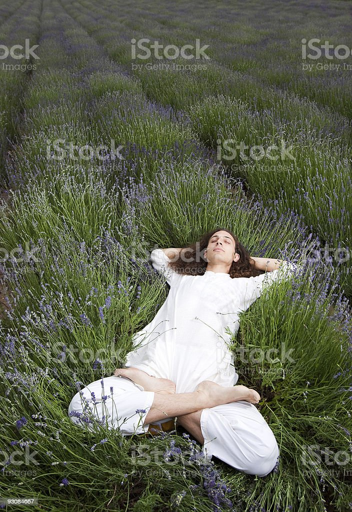 sleeping yogi royalty-free stock photo