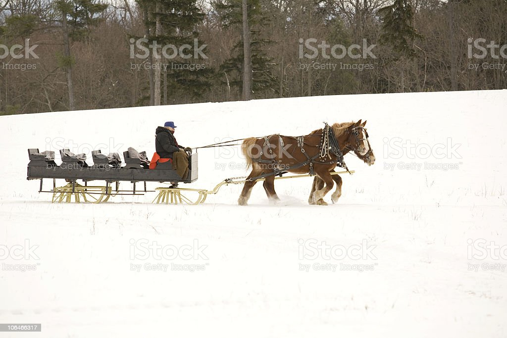 Sleigh and Horses royalty-free stock photo