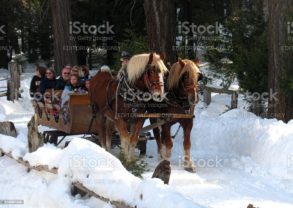 Sleigh Ride stock photo